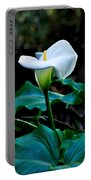 Calla Lily - Zantedeschia Aethiopica Portable Battery Charger