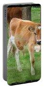 Calves Portable Battery Charger