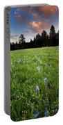 Camas Sunset Portable Battery Charger