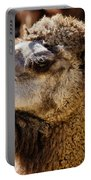 Camel Loose Lip Portable Battery Charger