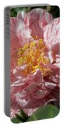 Camellia 2967 Portable Battery Charger