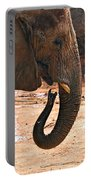 Camouflaged Elephant Portable Battery Charger