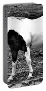 Camp Horse Portable Battery Charger