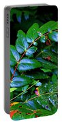 Campground Foliage Portable Battery Charger