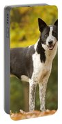 Canaan Dog Portable Battery Charger