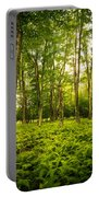 Canaan Path Portable Battery Charger