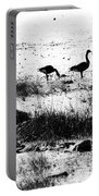 Canada Geese In Black And White Portable Battery Charger