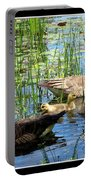 Canada Geese On Lily Pond At Reinstein Woods Portable Battery Charger