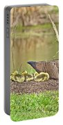 Canada Goose And Goslings Portable Battery Charger