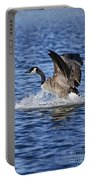 Canada Goose Pictures 111 Portable Battery Charger