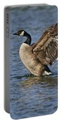Canada Goose Pictures 165 Portable Battery Charger
