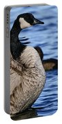 Canada Goose Pictures 84 Portable Battery Charger