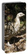 Canada Grouse Portable Battery Charger