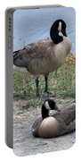 Canadian Geese Portable Battery Charger