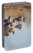 Canadian Geese Stop Over Portable Battery Charger