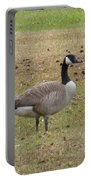 Canadian Goose Strutting  Portable Battery Charger