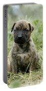 Canary Dog Puppies Portable Battery Charger