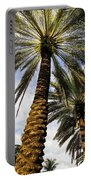 Canary Island Date Palms Portable Battery Charger