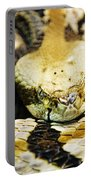 Canebrake Portable Battery Charger