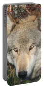 Canis Lupus  Portable Battery Charger