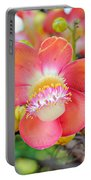 Cannonball Tree Portable Battery Charger