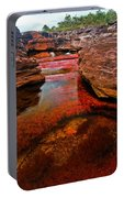 Cano Cristales Portable Battery Charger