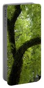 Canopy Of Cedar Elm Portable Battery Charger
