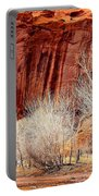 Canyon De Chelly - Spring II Portable Battery Charger