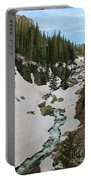 Canyon Scenery Portable Battery Charger