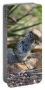 Canyon Squirrel Portable Battery Charger