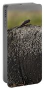 Cape Buffalo And Bird   #9873 Portable Battery Charger