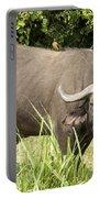 Cape Buffalo  Uganda Portable Battery Charger