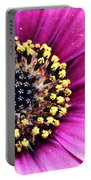 Cape Daisy Close Up Portable Battery Charger