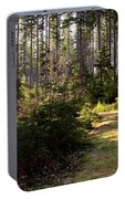 Capitol Forest Logging Road Portable Battery Charger