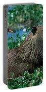 Capybara And Jacana Portable Battery Charger
