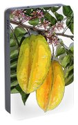 Carambolas Starfruit Two Up Portable Battery Charger