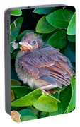 Cardinal Chick Portable Battery Charger