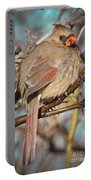 Cardinal Female Portable Battery Charger
