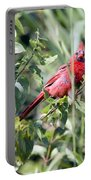 Cardinal In Bush I Portable Battery Charger