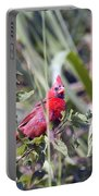 Cardinal In Bush Iv Portable Battery Charger