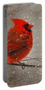 Cardinal In Snow Portable Battery Charger