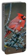 Cardinal In The Berries Portable Battery Charger