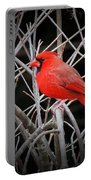 Cardinal Red With Black Portable Battery Charger