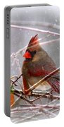 Cardinals - Male And Female - Img_003card Portable Battery Charger
