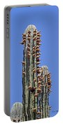 Cardon Cactus And Fruit  Portable Battery Charger