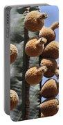 Cardon Cactus Fruit Portable Battery Charger