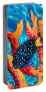 Caribbean Damselfish Portable Battery Charger