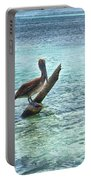 Caribbean Pelican I Portable Battery Charger
