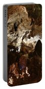 Carlsbad Caverns #2 Portable Battery Charger
