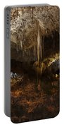 Carlsbad Caverns #3 Portable Battery Charger